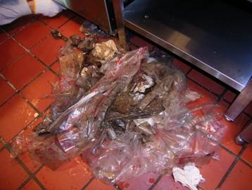 ゴキブリ防除施工 厨房機器下ゴミ出し清掃